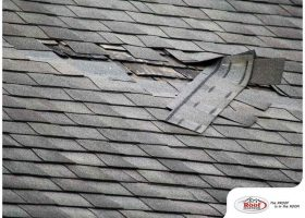 Top 4 Reasons Why Any Roof Could Fail Prematurely