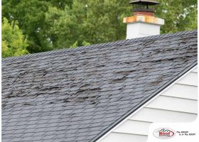 3 Different Ways a Storm Can Damage Your Roof